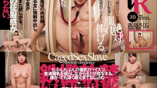 [DSVR024] [VR] Voluptuous Colossal Tits. Captured SEX Slave Sakura Kirishima - R18