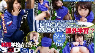 [3DSVR-0617] VR - Open Air Fucking At A School In The Woods - Two Classmates Show Each Other Their Private Parts... And End Up Having Secret Sex - Rio Ishihara - R18