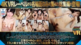 [EXBVR-025] [VR] Best Scene Selection! Missionary & Seated From Behind Creampie Sex 143-Minute Highlights Collection - R18